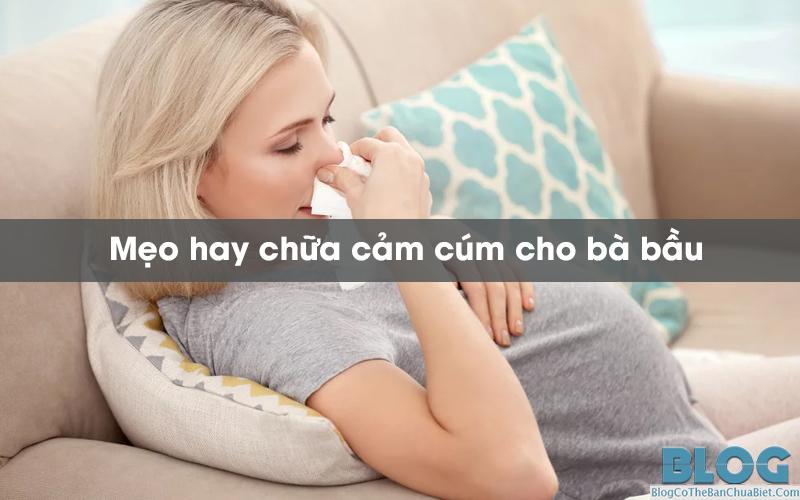 meo-chua-cam-cum-cho-ba-bau