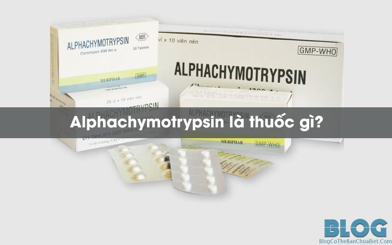 alphachymotrypsin-la-thuoc-gi
