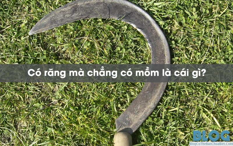 co-rang-ma-chang-co-mom-la-cai-gi