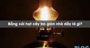 bang-cai-hat-cay-ba-gian-nha-day