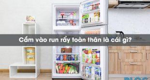 cam-vao-run-ray-toan-than-la-cai-gi