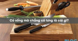 co-song-ma-chang-co-lung-la-cai-gi