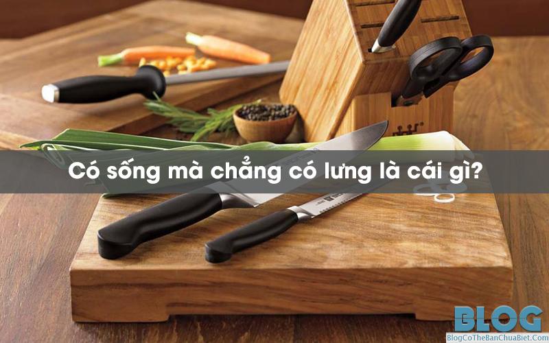 co-song-ma-chang-co-lung-la-cai-gi