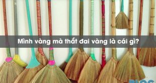 minh-vang-ma-that-dai-vang-la-cai-gi