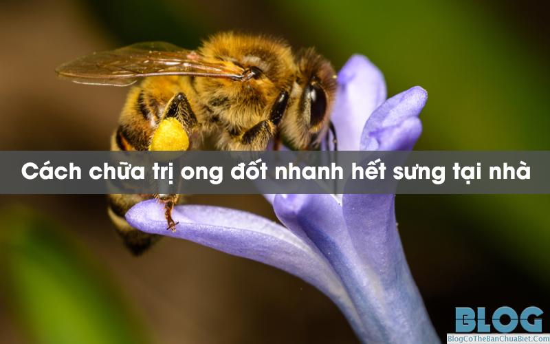 cach-chua-tri-ong-dot-nhanh-het-sung-tai-nha