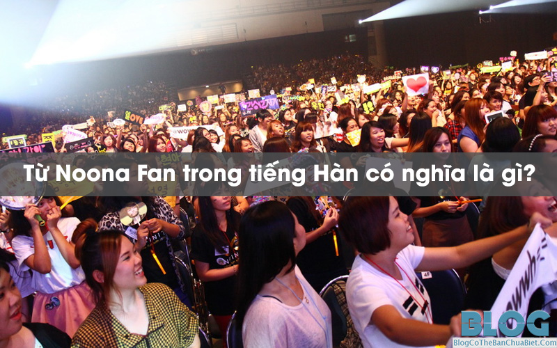 noona-fan-co-nghia-la-gi