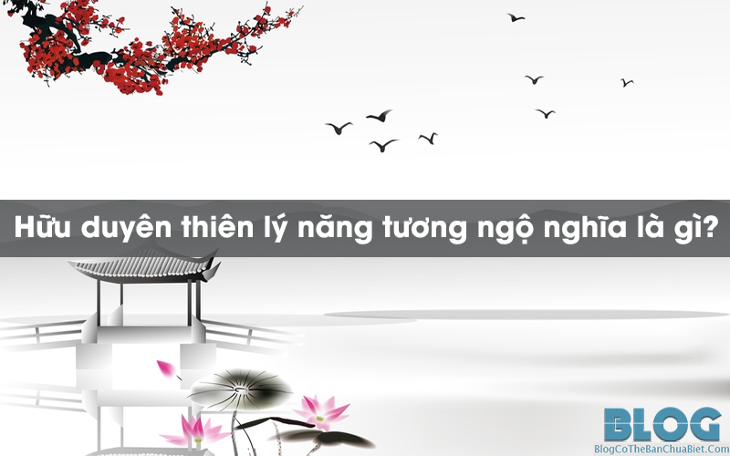 huu-duyen-thien-ly-nang-tuong-ngo-nghia-la-gi