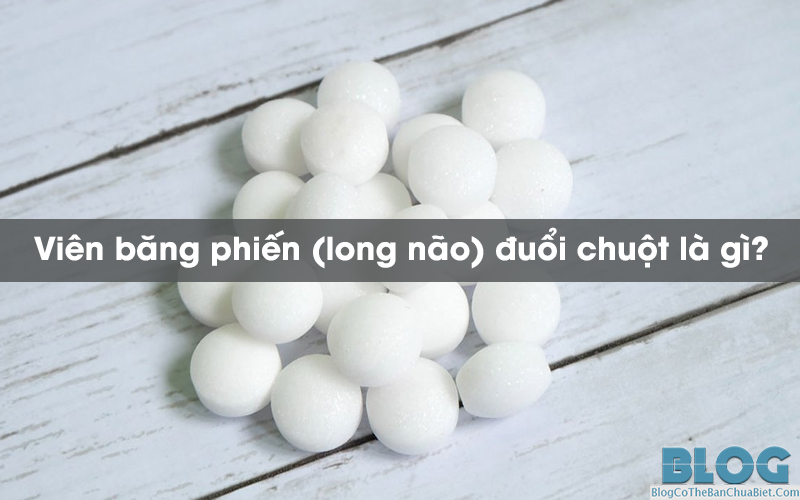 vien-bang-phien-long-nao-duoi-chuot-la-gi